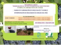 Charla Elaboración de vinos dulces y licores e interpretación de resultados de análisis de vino (6 horas)